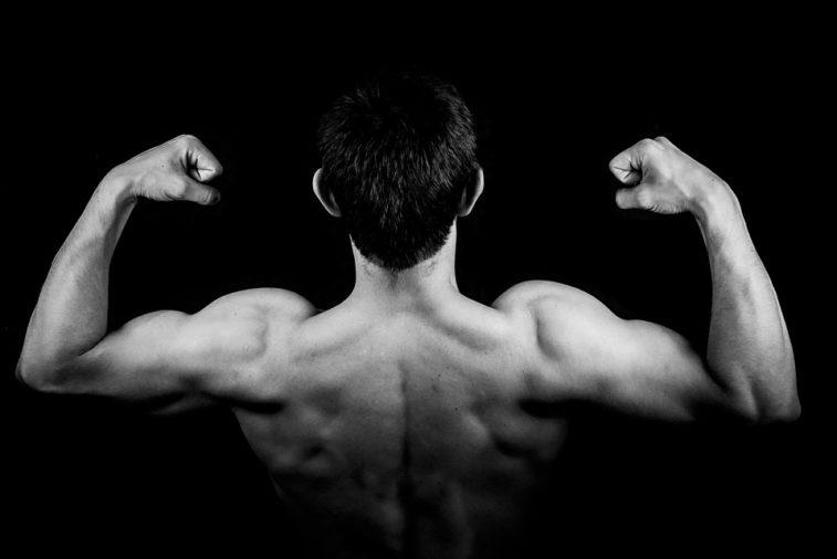 gagner du muscle
