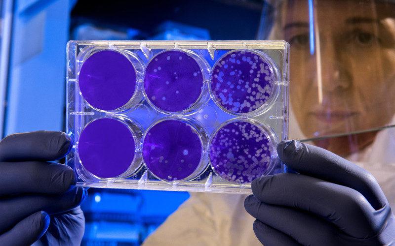La décontamination coronavirus des écoles